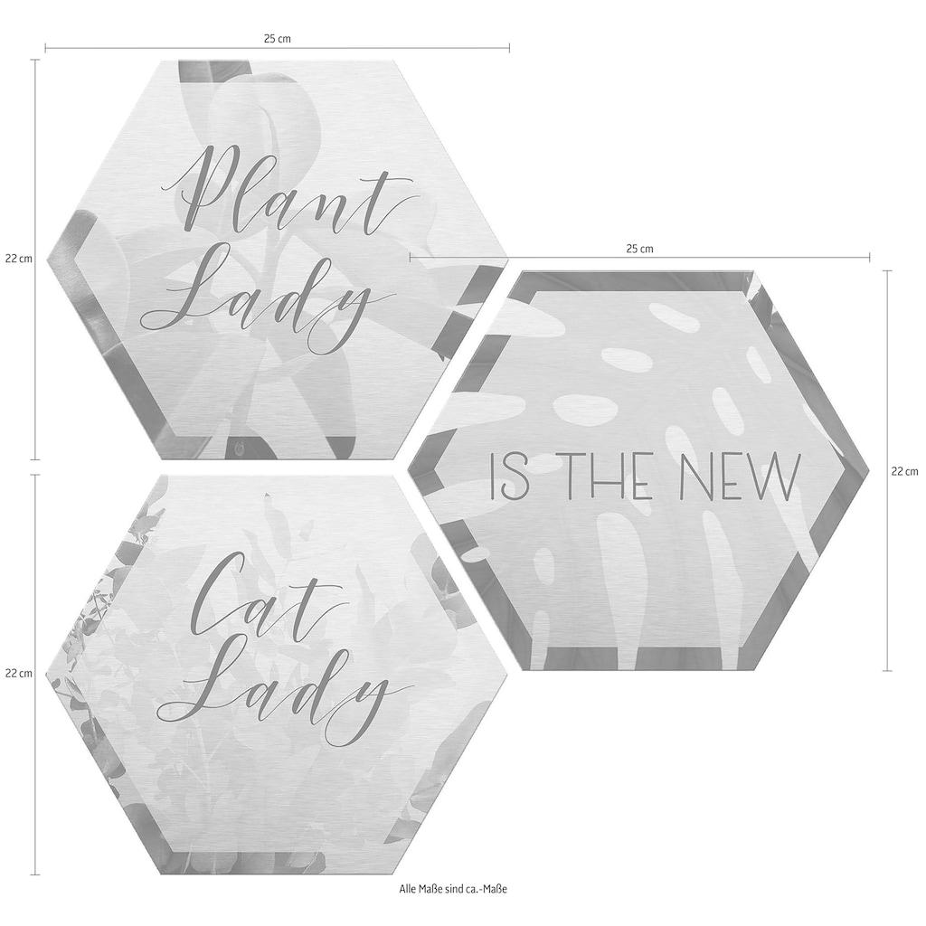 Wall-Art Alu-Dibond-Druck »Plantlady is the new Catlady«, (Set), Maße (B/H): 25/22 cm