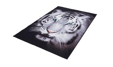 Teppich, »Weißer Tiger«, Andiamo, rechteckig, Höhe 4 mm, maschinell getuftet kaufen