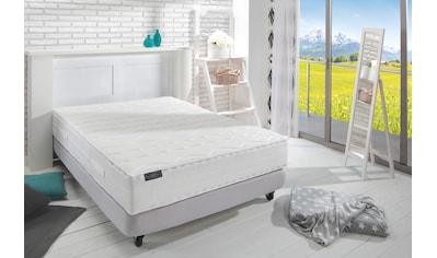 Frankenstolz Komfortschaummatratze »frankenstolz Allergo KS«, (1 St.), Die saubere Lösung für Allergiker kaufen