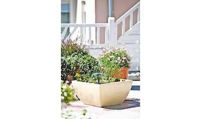 Heissner Springbrunnenpumpe »HSP600-i SMARTLINE«, 300 l/h kaufen
