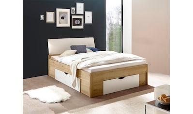 Schlafkontor Bettgestell »Darwin«, inkl. 3 Bettschubkästen kaufen