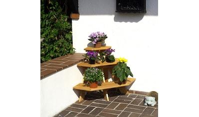 promadino Blumenständer »Blummentreppe Ecke«, BxTxH: 87x59x62 cm kaufen