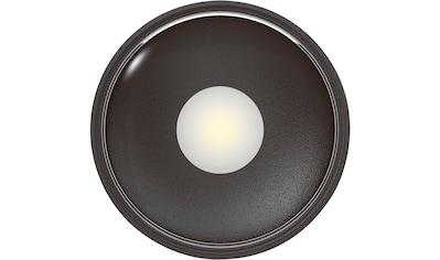 HEITRONIC LED Deckenleuchte »Girona«, LED-Board, Warmweiß, Höhe nur 36 mm kaufen