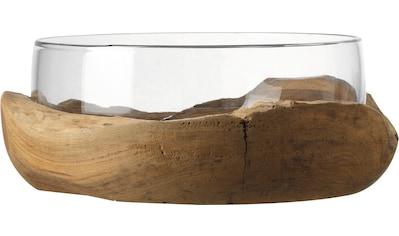 LEONARDO Obstschale »Terra«, Ø 28 cm, mit Teaksockel kaufen