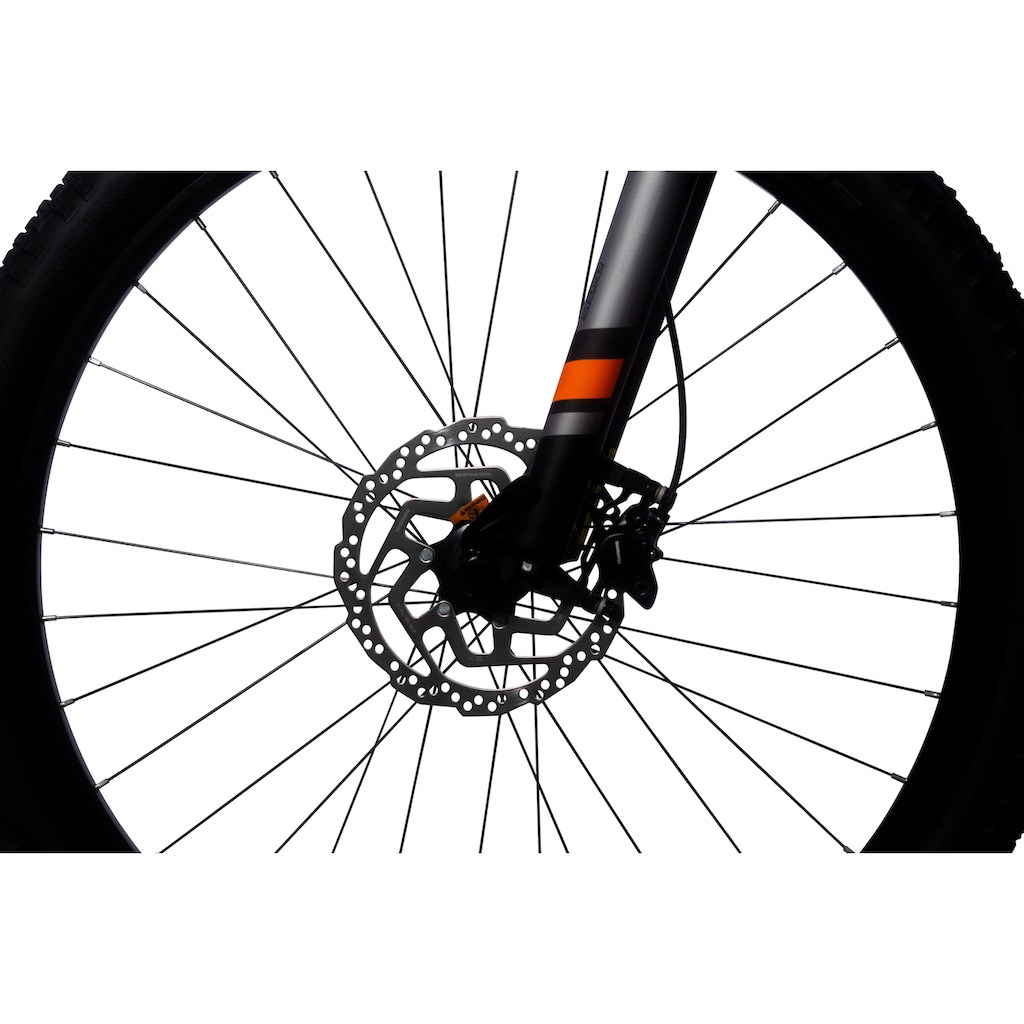 ALLEGRO E-Bike »E MTB M Cross«, 9 Gang, Shimano, Altus, Mittelmotor 250 W