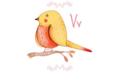 Wall-Art Wandtattoo »Kleiner Vogel Buchstabe V« kaufen