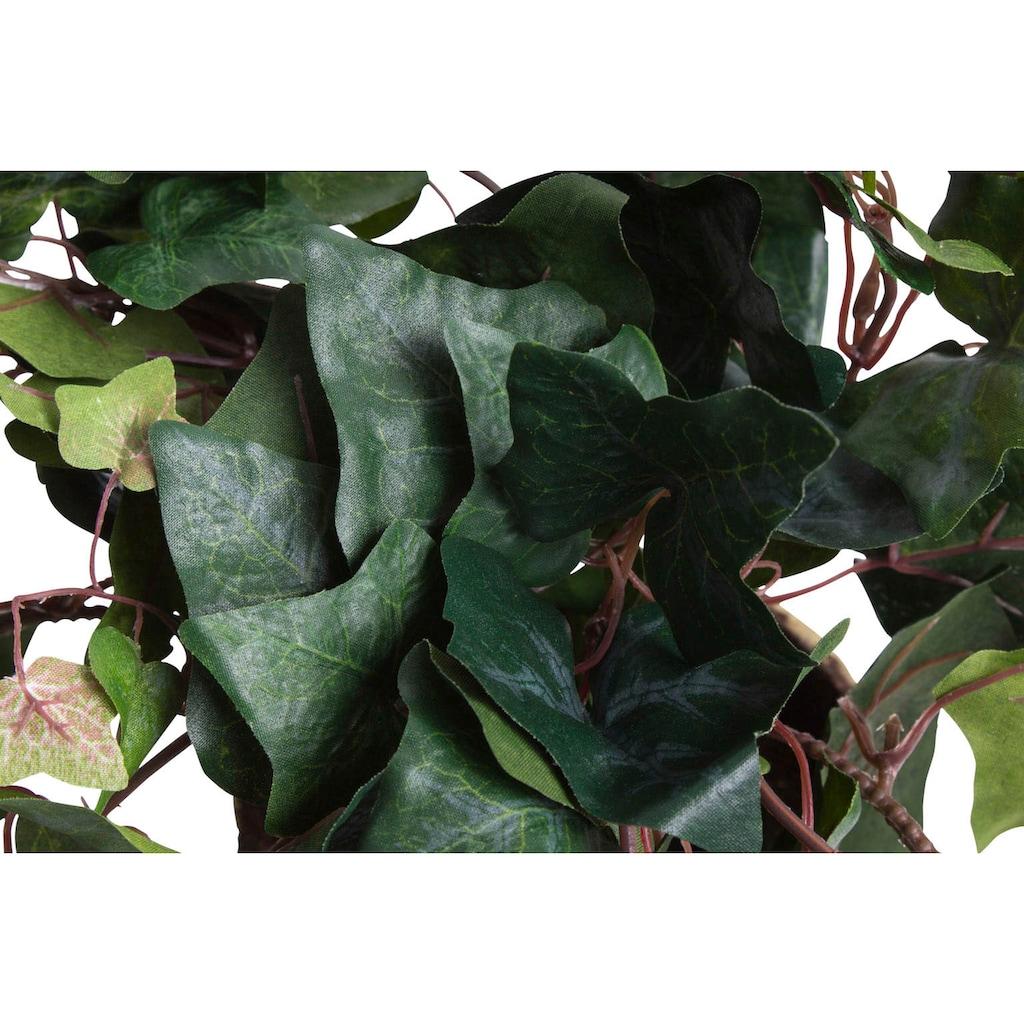 Botanic-Haus Künstliche Zimmerpflanze »Efeuhängebusch«