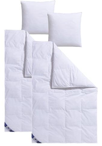 Traumecht Federbettdecke + Kopfkissen »Traumecht«, (Spar-Set), mit 8 cm hohen Innen- & Außenstege kaufen