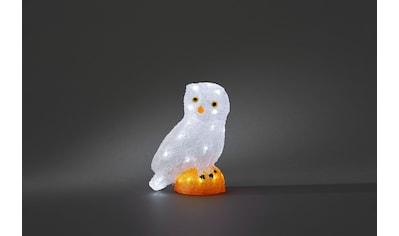 KONSTSMIDE LED-Dekofigur, LED Acryl Eule, klein, 32 kalt weiße Dioden kaufen