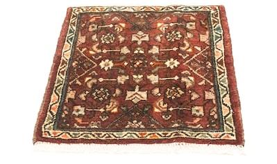 morgenland Wollteppich »Hamadan Teppich handgeknüpft braun«, quadratisch, 10 mm Höhe,... kaufen
