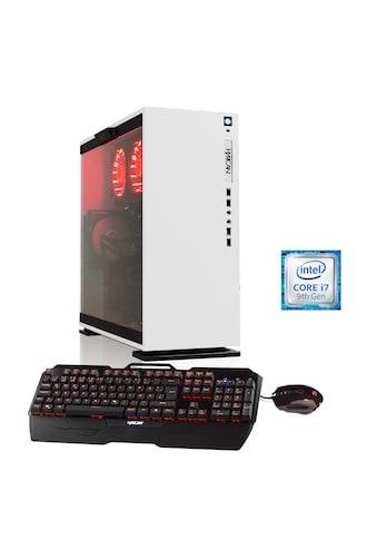 Hyrican Gaming PC i7 - 9700KF, 32GB, SSD + HDD, RTX 2070 SUPER »Elegance 6429 mit Wasserkühlung« kaufen