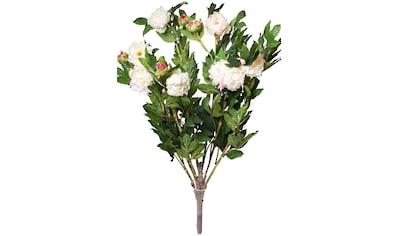 Botanic-Haus Kunstblume »Pfingstrosenbusch« kaufen
