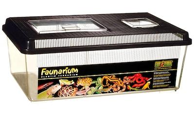 EXO TERRA Terrarium »Faunarium«, BxTxH: 46,5x30,5x18 cm kaufen