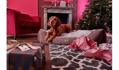 Guido Maria Kretschmer Home&Living Tierbett »Guido« kaufen