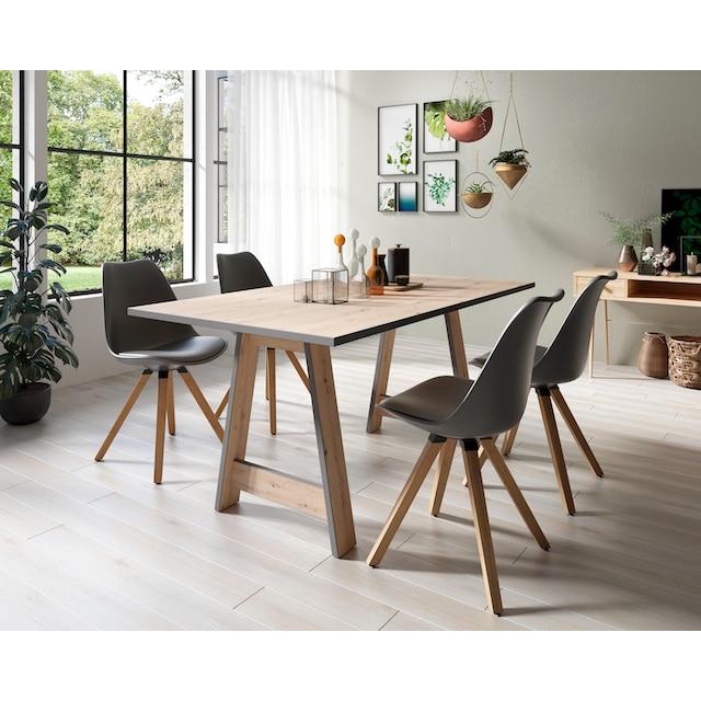 Homexperts Essgruppe »Till und Kaja« (Set, 5-tlg Esstisch mit 4 Stühlen)