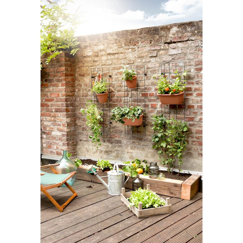 Emsa Blumenkasten »CITY«, Wandgartenrankgitter 110x36 inkl. 8 Topfhaken und zwei Töpfe