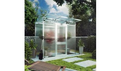KGT Gewächshaus »Linea I«, BxTxH: 233x110x220 cm kaufen