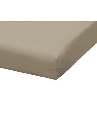 TRAUMSCHLAF Spannbettlaken »Zwirn Jersey Premium«, schwere Qualität für Topper kaufen