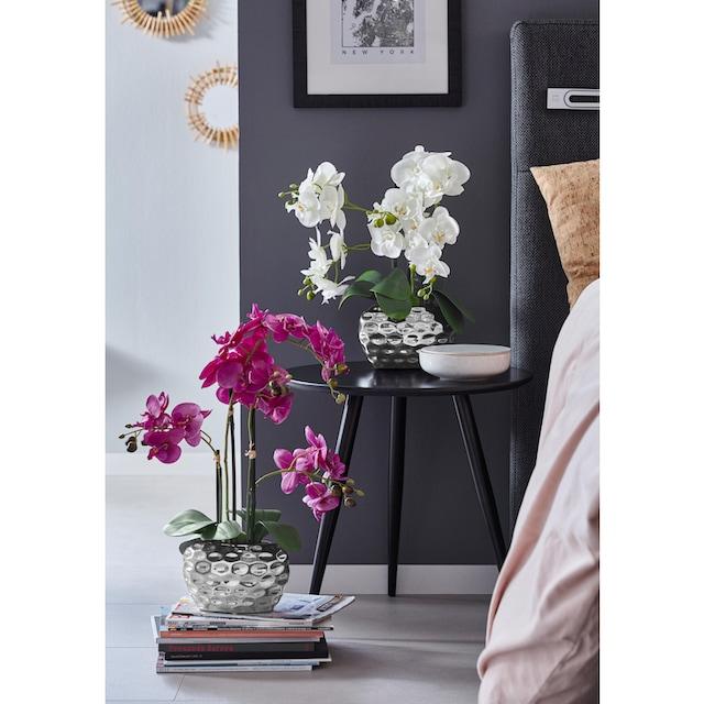 Creativ green Kunstpflanze »Orchidee« (1 Stück)