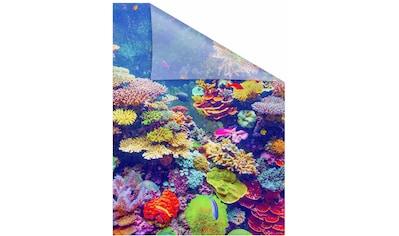 LICHTBLICK Fensterfolie »Aquarium«, selbstklebend, Sichtschutz kaufen