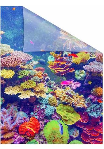 LICHTBLICK ORIGINAL Fensterfolie »Aquarium«, 1 St., blickdicht,... kaufen
