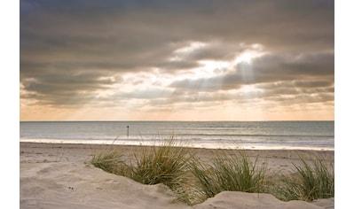 PAPERMOON Fototapete »Dunes in Winter«, Vlies, in verschiedenen Größen kaufen