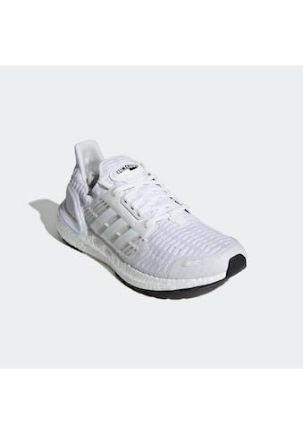 adidas Performance Laufschuh »ULTRABOOST DNA CC_1« kaufen