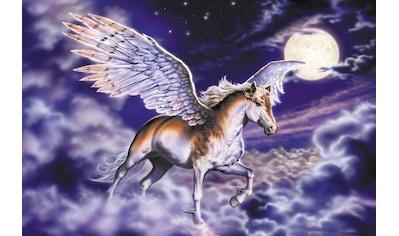 Papermoon Fototapete »Pegasus« kaufen