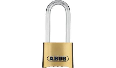ABUS Vorhängeschloss »180IB/50HB63 B/DFNLI«, für Einsätze bei starken Witterungseinflüssen kaufen