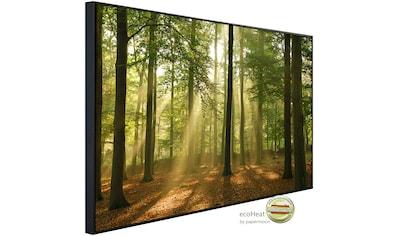 Papermoon Infrarotwandheizung »Wald am Morgen«, sehr angenehme Strahlungswärme kaufen