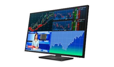 "HP HP Z43 Display »107,97 cm (42,51"") 4K - UHD, 8 ms« kaufen"
