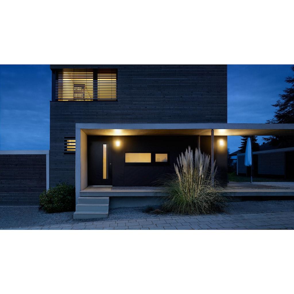 steinel Außen-Wandleuchte »L 240 LED«, LED-Board, 1 St., Warmweiß, 180° Erfassungsbereich