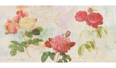 Home affaire Deco-Panel »ERIC CHESTIER / Redout´s Roses«, (100/3/50 cm) kaufen
