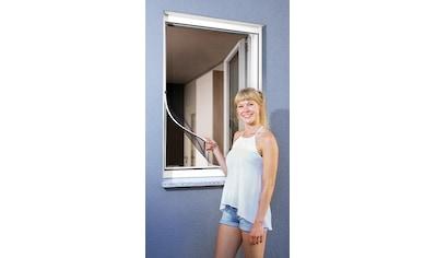 SCHELLENBERG Insektenschutz - Fenster »Magnet«, BxH: 100x120 cm, weiß kaufen