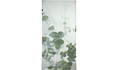Juniqe Handtuch »Eucalyptus Green 2«, (1 St.), Weiche Frottee-Veloursqualität kaufen