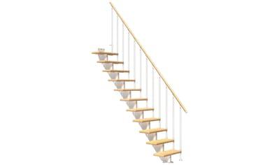 DOLLE Mittelholmtreppe »Frankfurt Birke 65«, bis 258 cm, Metallgeländer, versch. Ausführungen kaufen