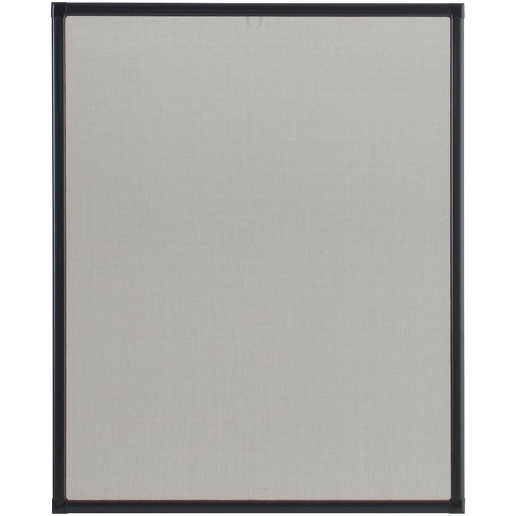 hecht international Insektenschutz-Fenster »BASIC«, anthrazit/anthrazit, BxH: 80x100 cm