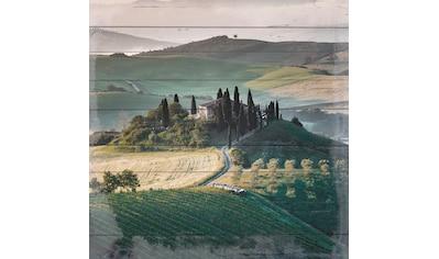 QUEENCE Holzbild »Weinberge in der Toscana«, 40x40 cm Echtholz kaufen