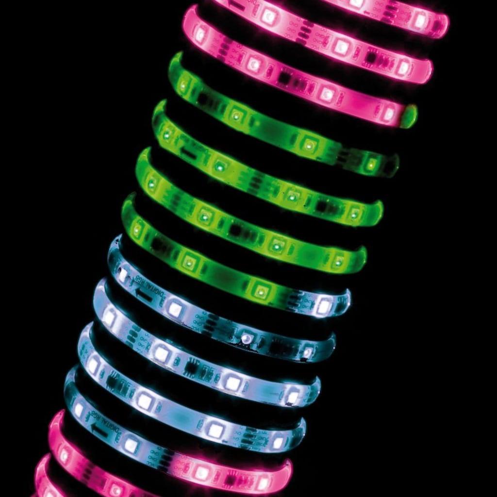 Paulmann LED-Streifen »Digital dimmbar RGB bunt 3m Set Weiß Kunststoff kürzbar«, 1 St.-flammig
