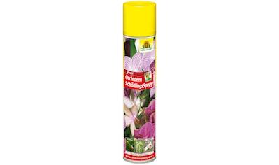 NEUDORFF Pflanzenschutzmittel »Spruzit Orchideen Schädlings Spray«, 300 ml kaufen