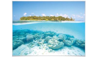 Wall-Art Poster »Unterwasserwelt Malediven«, Meer, (1 St.), Poster, Wandbild, Bild, Wandposter kaufen