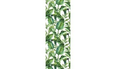 queence Vinyltapete »Green Leaves«, 90 x 250 cm, selbstklebend kaufen