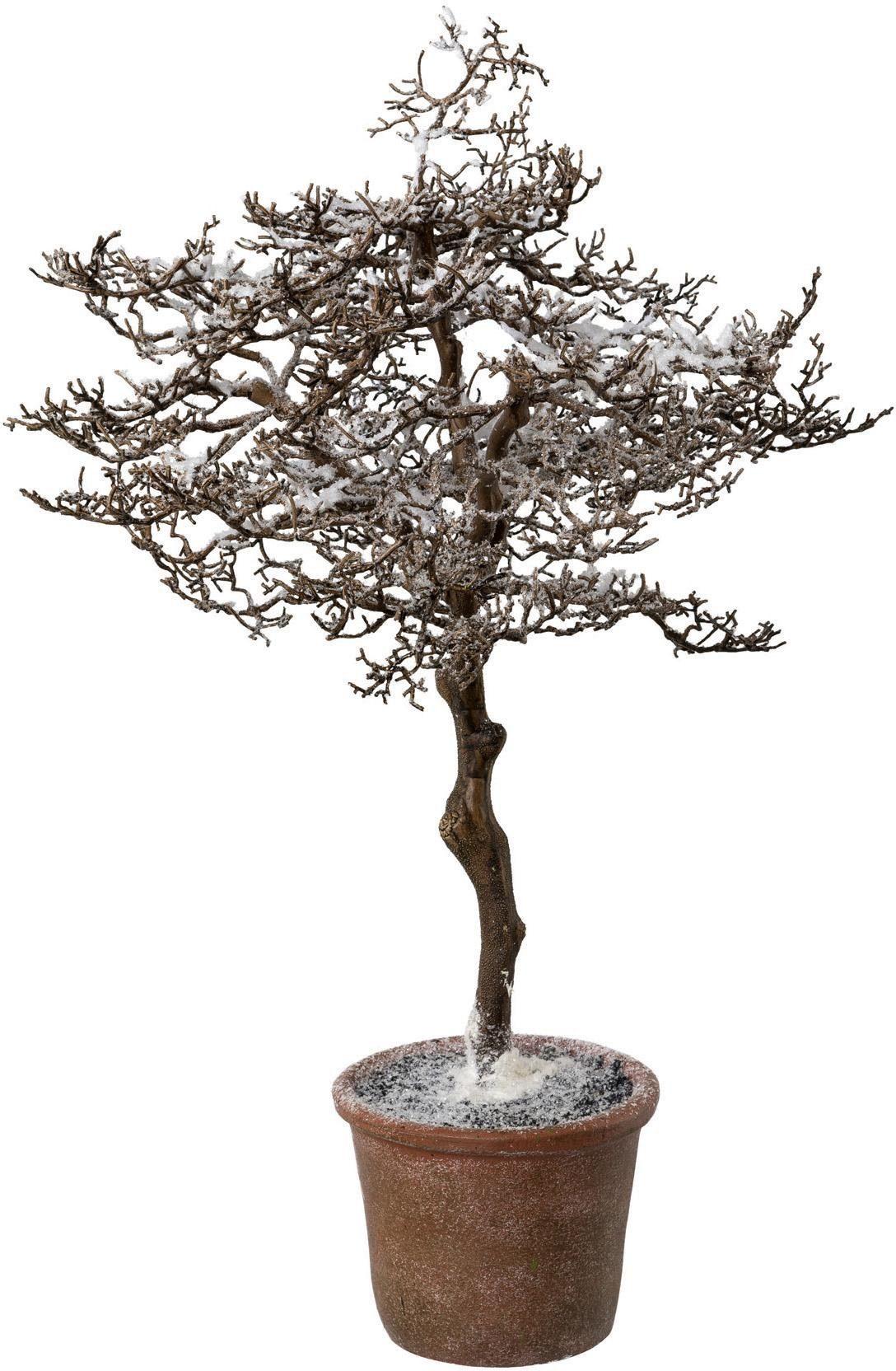 Kunstbaum Hainbuche im Topf (1 Stück) Wohnen/Möbel/Kleinmöbel/Kunstpflanzen/Kunstbäume