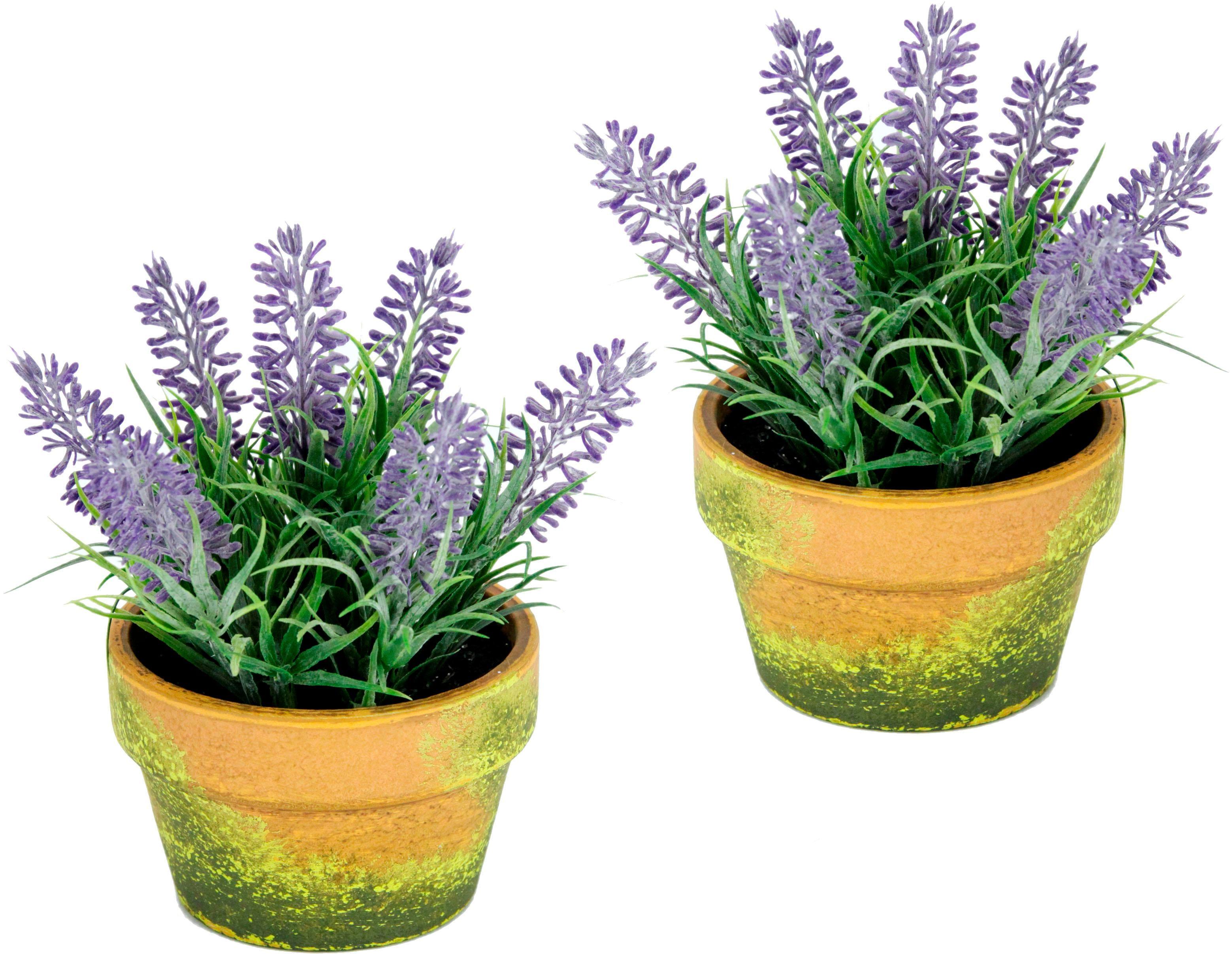 I.GE.A. Kunstblume, im Topf lila Künstliche Zimmerpflanzen Kunstpflanzen Wohnaccessoires Kunstblume