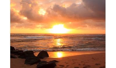 Papermoon Fototapete »Sunrise Lihue Beach« kaufen
