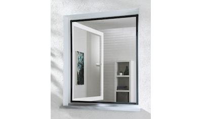hecht international Insektenschutz - Fenster »MASTER SLIM«, anthrazit/anthrazit, BxH: 130x150 cm kaufen