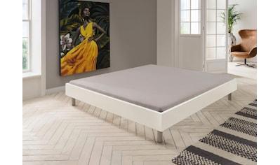 Wimex Bett »Easy«, ohne Kopfteil, frei im Raum stellbar kaufen