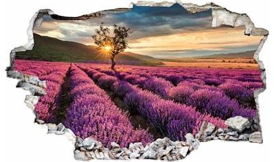 Wandtattoo »Lavendel in der Provence« kaufen