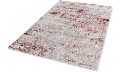 Teppich, »Noa«, ASTRA, rechteckig, Höhe 9 mm, maschinell gewebt kaufen