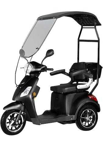 Didi THURAU Edition Elektromobil »3-Rad Bologna mit Wind-und Wetterschutz 25 km/h«,... kaufen
